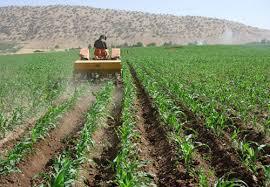 پاورپوینت آیش و تناوب زراعی در زراعت عمومی